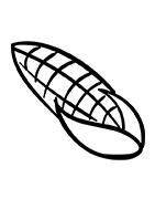 Milhos
