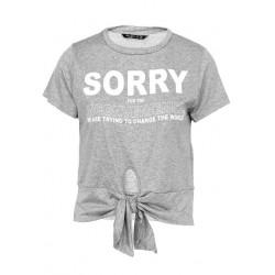 Polo Wear Blusa Cinza SORRY...
